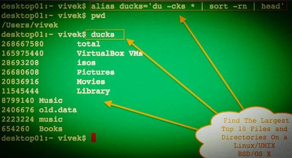 Linux如何查找大文件,全网最全教程!